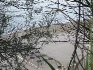 la spiaggia (1)